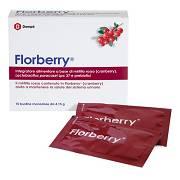FLORBERRY 10BUSTX4,15G